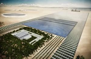 Проект за залесяване на Сахара